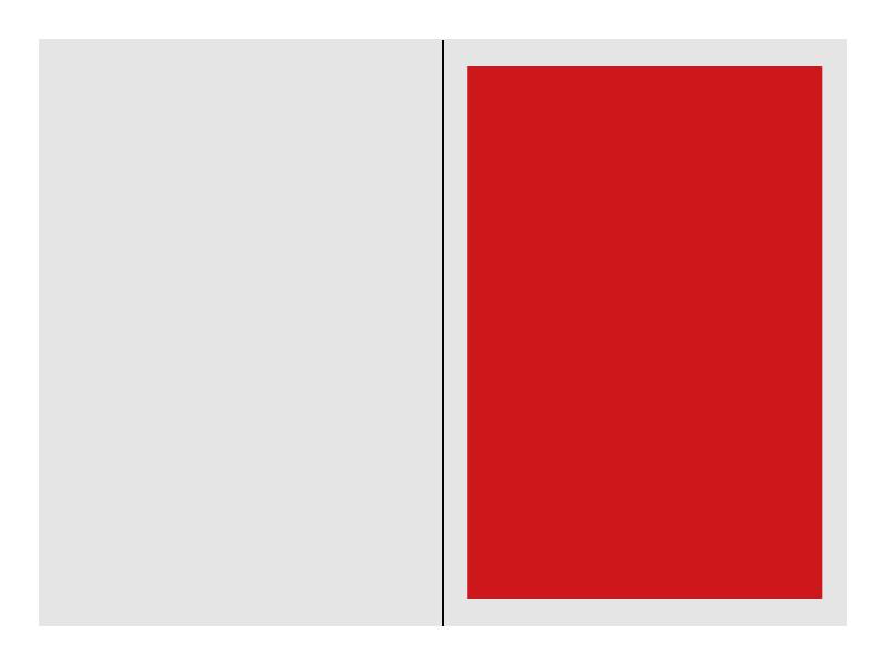Kronen Zeitung Format 1/1