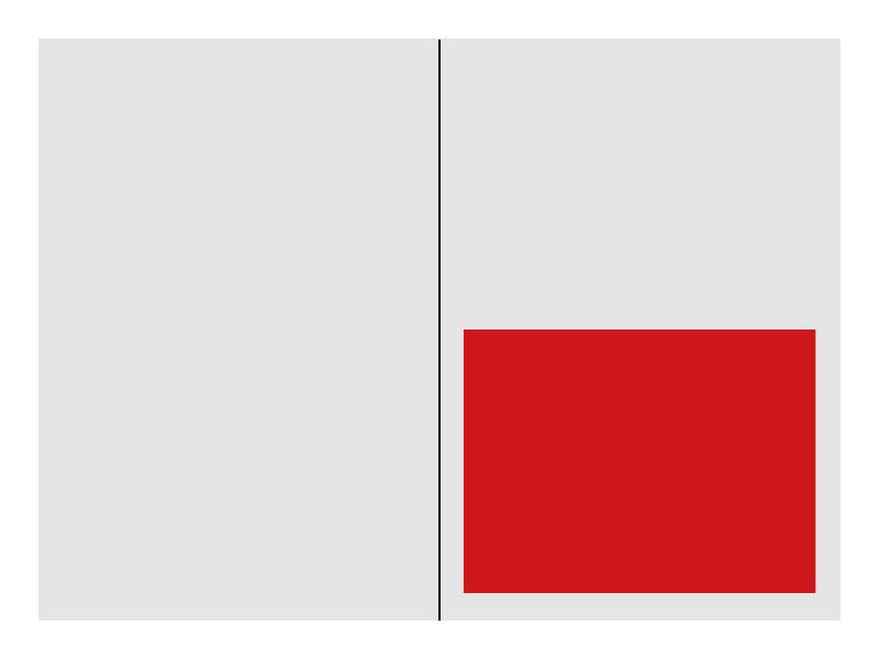Kronen Zeitung Format 1/2
