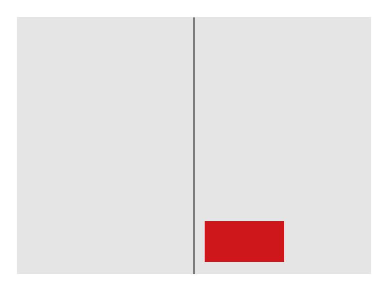 Kronen Zeitung Format 1/4